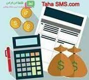 تنظیمات مالی نمایندگی